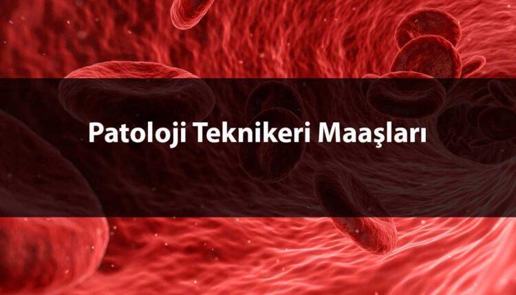 mikrobiyoloji, biyokimya, laboratuar yöntem